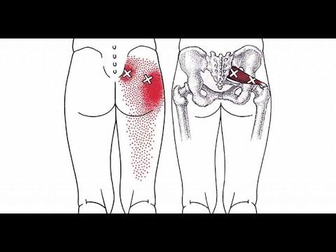 Les exercices sur les muscles des pieds avec le poids