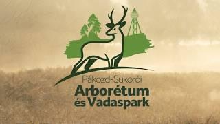 Pákozd Sukorói Arborétum és Vadaspark
