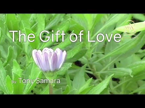 Gift of love meditation with Tony Samara