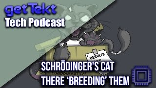 SchröDinger's Cat They're Breeding THEM!!