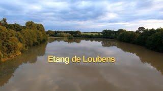 Etang De Loubens - MJX Bugs 3