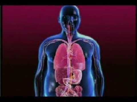 Amerikanische Blutzuckerspiegel Indikatoren
