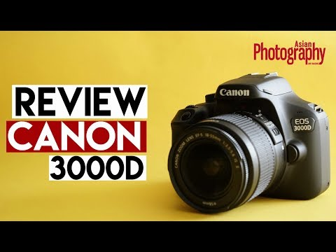Canon EOS 3000D Review: Should you buy it?