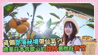 【下班Go Fun吧!】從新竹直奔日本和歌山 免出國就能吃到香甜富有柿!