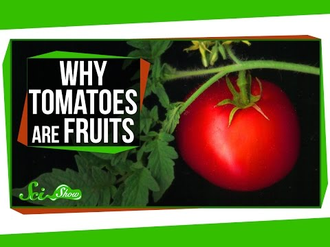 , title : 'Why Tomatoes Are Fruits, and Strawberries Aren't Berries