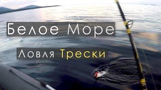 Ловля трески в Белом Море | В плохую погоду за крупной рыбой | IRL