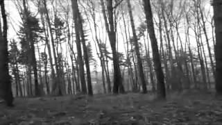 Video Snagathrak - Dark forest (Official video)