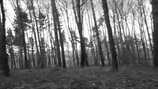 Snagathrak - Dark forest (Official video)