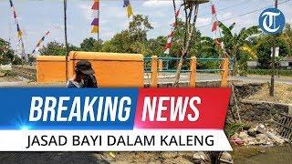 BREAKING NEWS: Temuan Mayat Bayi dalam Kaleng Biskuit oleh Warga Purwomartani Kalasan