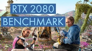 Far Cry New Dawn RTX 2080 Benchmark Run 1440P