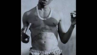 2pac - Untouchable [Swizz Beat Remix]