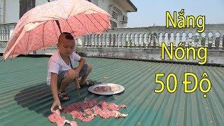 Thịt Bò Áp Mái Tôn 50 Độ - Liệu Mao Đệ Có Thành Công Với Món Ăn Mới Này Hay Không ??