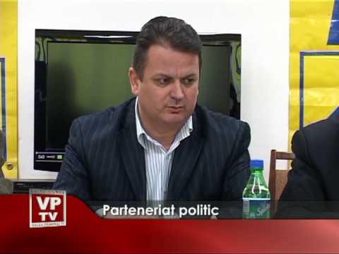 Parteneriat politic