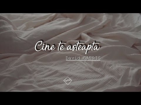 David Gaeris – Cine te asteapta Video