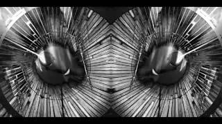 Flux Pavilion - Never See The Light (feat. Andrea Martin) / Music Video