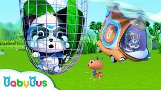 Help! Baby Panda's Trapped in the Net | Super Panda Rescue Team | Panda Cartoon | BabyBus