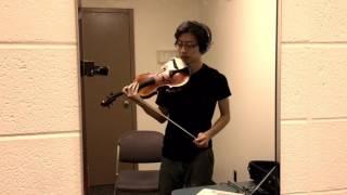 Goosebumps - Travis Scott (Violin Cover)