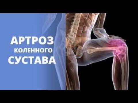 ортодокс крем для суставов