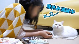 My cat and my sister's summer vacation is too fun ...!