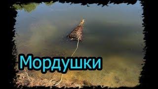 Рыбалка на мордушки, Ловушки для рыбы. ч.2.