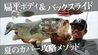 【BBTIME】夏を制するカバーの釣り!扁平ボディ&フリーリグでおかっぱり攻略 / 加木屋守 松田祐輝