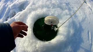 Рыбалка в миротино
