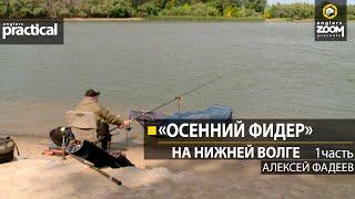 Рыбалка на нижней волге поздней осенью