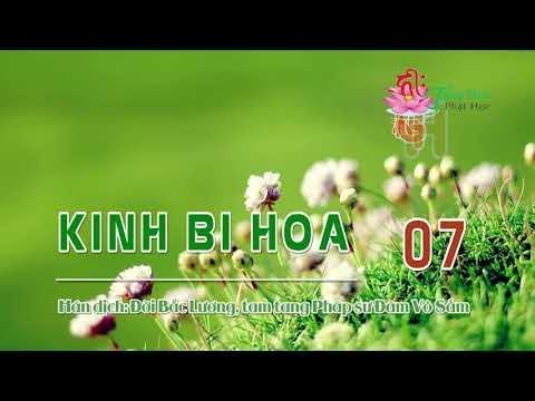 Kinh Bi Hoa -7