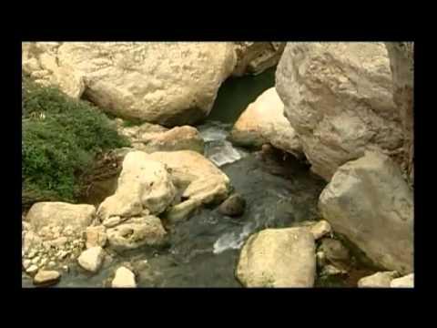 إبراهيم - الجزء الخامس عشر - التضحية الاخيره