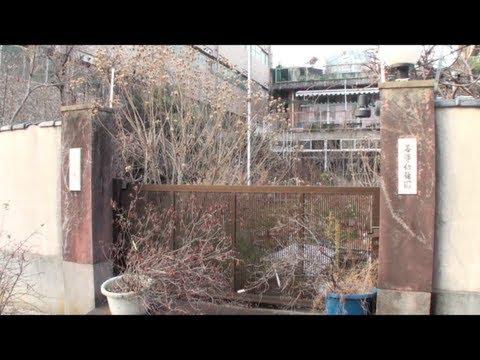 京都 善導幼稚園の今-休園中-2013年冬