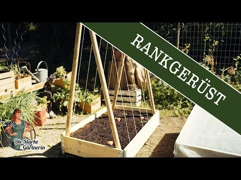 DIY Rankgerüst