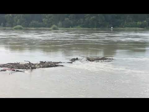 Wideo1: Wysoki stan Odry w Ciechanowie