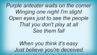 Damien Jurado - Purple Anteater Lyrics