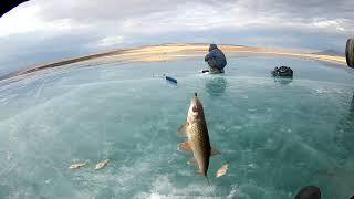 На озеро парное зимняя рыбалка
