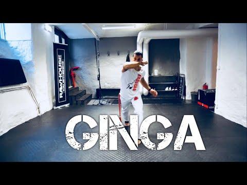 Learn Capoeira,  GINGA
