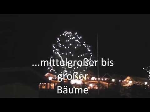 StarLeds LED Lichterkette mit Flashlights für große Bäume