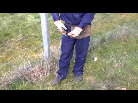 Tying Electric Insulators to Strainer Post