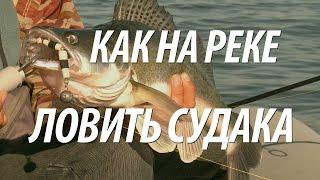 Рыболовные снасти для рыбалки на волге