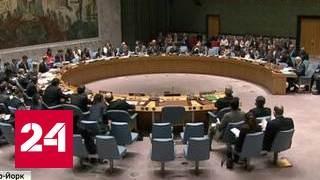 Правда в глаза: зачем разжигают тему Сирии в Совбезе