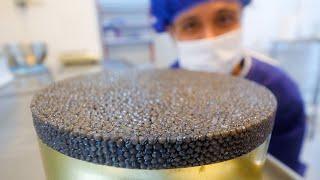 $4,000 Caviar!! HUGE BELUGA STURGEON - Black Caviar + Kebabs   Caspian Sea, Iran!