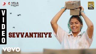 Seeru - Sevvanthiye Video   Jiiva, Riya Suman   D. Imman