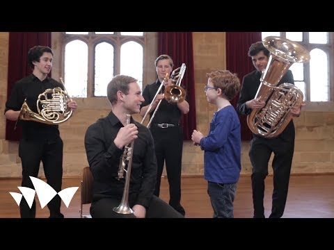 George Meets the Orchestra | An Introduction to the Orchestra for Children