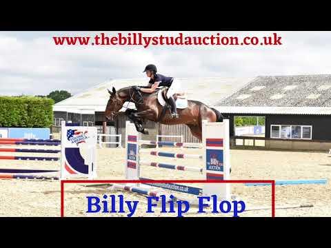 Billy Flip Flop
