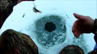 Отчет о рыбалке саратов декабрь 2020