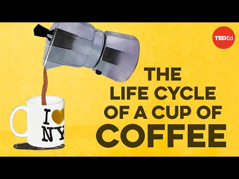 Tracing Coffees Life Cycle