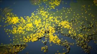 HungaroControl cégbemutató videó