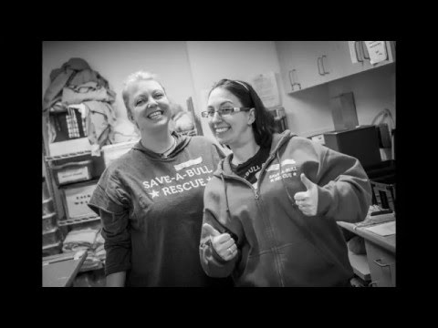 A behind the scenes look at our spay/neuter clinics.