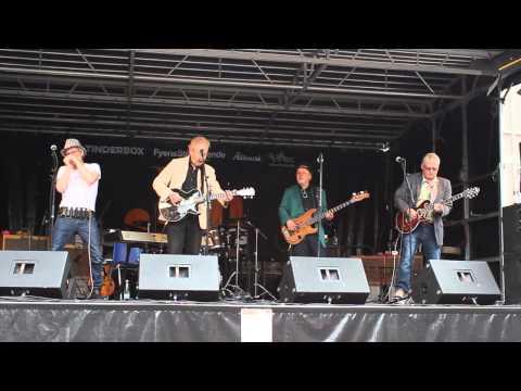 Delta Blues Band   Jam Days 2015