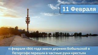 Частные владения крестьян в Петергофе