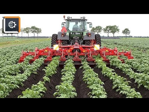 НЕВЕРОЯТНЫЕ Фрукто-уборочные МАШИНЫ. Удивительная Сельхозтехника видео